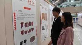 (缩略图)中国古代纸文化展、中华古琴文化展在省图书馆开展 1