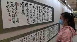 (缩略图)《敦诗悦礼》书法展在吉林省图书馆开展
